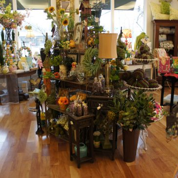 Main street limited specialty shop brevard nc for Home decor 365
